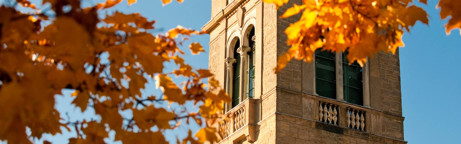 The view of the Carillon Tower framed by the golden autumn leaves.
